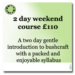 2 day bushcraft course